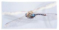 Aeshna Juncea - Common Hawker In Beach Sheet by John Edwards