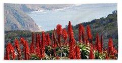 African Aloe And False Bay Beach Towel