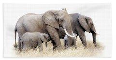 African Elephant Group Isolated Beach Sheet