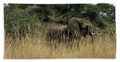Beach Towel featuring the photograph African Elephant In Tall Grass by Karen Zuk Rosenblatt