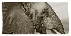 African Elephant Profile  Duotoned Beach Towel