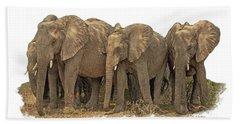 African Elephants 2 Beach Towel