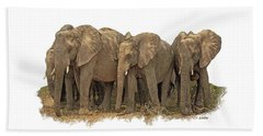 African Elephants 2 Beach Sheet