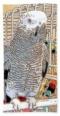African Grey Parrot In Pencil Beach Towel