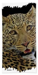 African Leopard Portrait Beach Towel