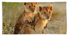 African Lion Cubs Beach Towel