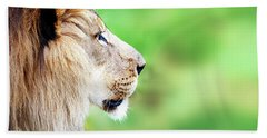 African Lion Face Closeup Web Banner Beach Towel