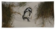 African Penguin On A Mission Beach Sheet