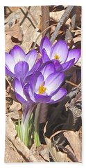 After The Snow Has Gone Beach Towel