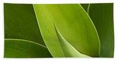 Beach Towel featuring the photograph Agave by Heiko Koehrer-Wagner