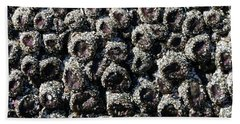 Aggregating Anemones  Beach Towel