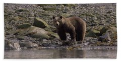 Alaskan Brown Bear Dining On Mollusks Beach Sheet