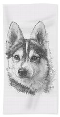 Alaskan Klee Kai Beach Sheet