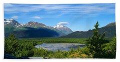 Alaska's Exit Glacier Valley Beach Sheet