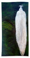 Albino Peacock Beach Towel by LaVonne Hand