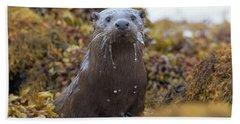 Alert Female Otter Beach Towel