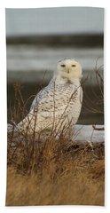 Alert Snowy Owl Beach Towel