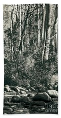 Beach Towel featuring the photograph All Was Tranquil by Linda Lees