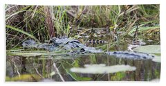 Alligator And Hatchling Beach Towel