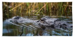 Alligator Closeup-2-0600 Beach Towel