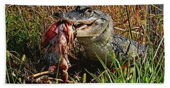 Alligator Eating A Fish Beach Sheet