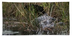 Alligator Lurks-0620a Beach Towel