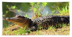 Alligator Beach Sheet