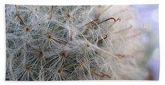 Beach Sheet featuring the photograph Allium Sativum by Jolanta Anna Karolska