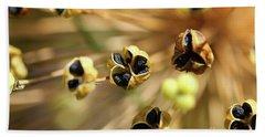 Allium Seed 1 Beach Sheet