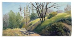 Along The Pacific Crest Trail Beach Towel