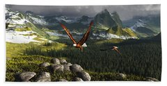 Along The Pinnacles Of Time Beach Towel