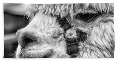 Alpaca Close Beach Sheet