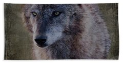 Alpha Wolf Portrait Beach Sheet