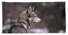 Alpine Surveyor - Grey Wolf Beach Towel