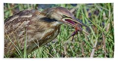 Am Bittern And Crayfish Beach Towel