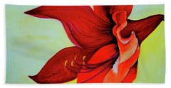 Amaryllis Blossom Beach Towel