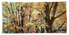 Beach Towel featuring the photograph Amazing Fall by Irina Sztukowski