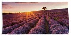 Amazing Lavender Field At Sunset Beach Towel