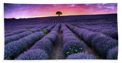 Amazing Lavender Field With A Tree Beach Towel