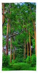 Amazing Rainbow Eucalyptus Beach Sheet