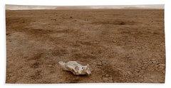 Amboseli Lake Beach Sheet