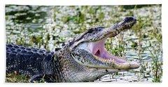 American Alligator Florida 3314_2 Beach Sheet