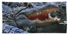 American Alligators Beach Towel
