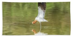 American Avocet Stretching Beach Towel by Tam Ryan