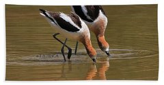 American Avocets Swishing Beach Towel