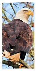 American Bald Eagle Beach Sheet