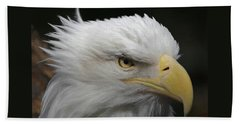 American Bald Eagle Portrait Beach Towel by Ernie Echols