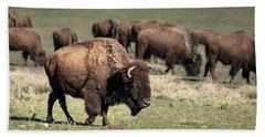 American Bison 5 Beach Towel