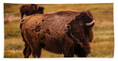 Beach Sheet featuring the photograph American Bison by Chris Bordeleau