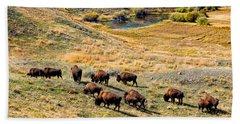 American Bison In Autumn Beach Sheet